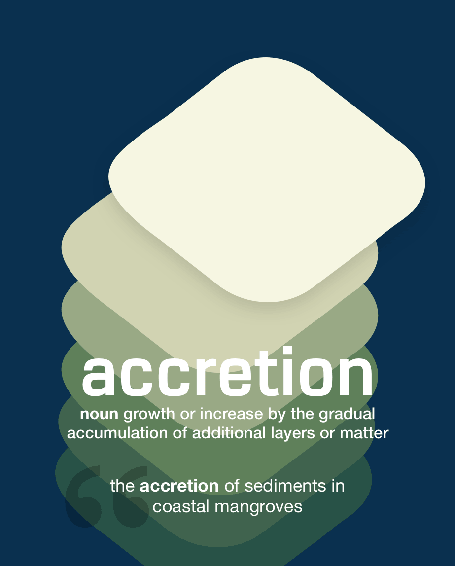 Definition from LookUp for accretion