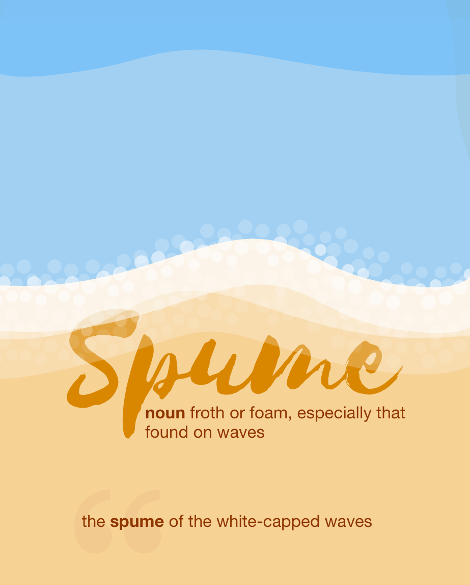 Definition from LookUp for spume